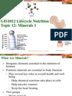2018 GIS1012 Minerals Suppl Notes
