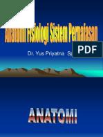 Anatomi pernafasan