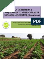 Plan de Siembra y Requerimento Nutricional de Solanum