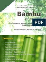 Bamboo in Indonesia 160312