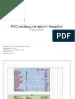 PSC Rectangular Section Template