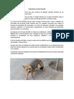 Zoologico El Buen Pastor