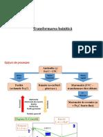 C8 - Transformarea Bainitică.pdf