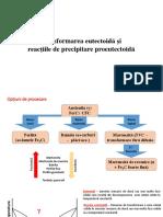 C11-Curs-Transformarea eutectoida si reactiile de precipitare proeutectoida