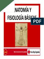 ANATOMÍA Y FISIOLOGÍA BÁSICAS.pdf