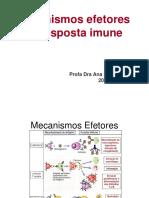 Mecanismos Efetores da Resposta Imune