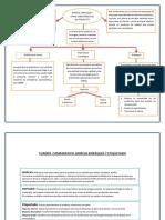 Examen de Administracion Financiera