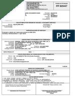 modelo de pedido de producao.pdf