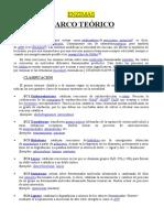 ENZIMAS-MARCO-TEORICO.docx