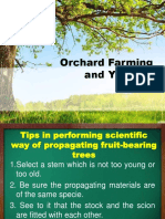 Orchard Farming and You Part 4