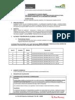 REQUERIMIENTO (2) 3.docx