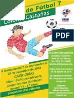 Campeonato Fútbol 7 Castañas