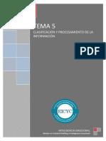 Clasificación y procesamiento de la información.pdf
