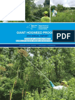 Giant Hogweed Annual Report (2018)