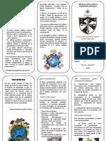 TRIPTICO MARVIA CONTAMINACIÓN.docx