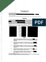 Dr. Robert W. Wiseman report
