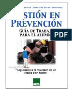 Prevencion de Riesgo Factores