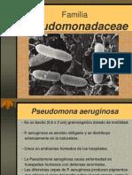 8.- Familia Pseumonadaceae y Neisseriaceae