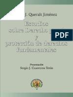 Joan Josep Queralt Jiménez - Estudios Sobre Derecho Penal y Protección de Derechos Fundamentales-Instituto de Estudio e Investigación Jurídica (INEJ) (2007)