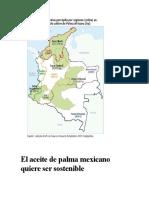 Cartilla de Difusion Palma