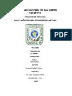 Historia de La Universidad Nacional de San Martín
