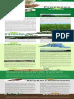 Procesos_de_Ingenio_Providencia.pdf