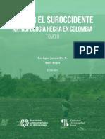 Jaramillo y Rojas, suroccidente 2019.pdf