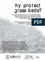 201001WhyProtectSeagrassBeds.pdf