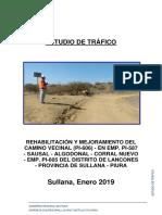 Estudio Trafico Sausal PI606.docx