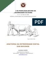 Anatomia podal bovina RR 2006.pdf