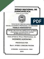 Control biologico  de gorgojo de la papa.pdf