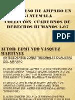 exposicion procesal constitucional