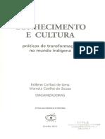 COELHO DE SOUZA, Marcela. A vida material das coisas intangíveis