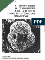 Molina1979TesisDoctoral.pdf