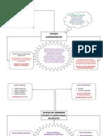 Mapa Conceptual Politicas Publicas