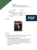 p 11 fiNAL