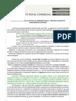 Plangerea Impotriva Activitatii de Urmarire Penala Principiul Celeritatii Procedurilor Judiciare