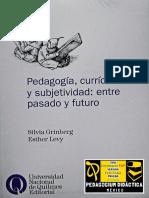 pedagogía, currículo y subjetividad.pdf