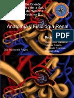 Anatoma y Fisiologa Renal Definitivo