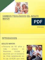 Cambios Fisiológicos Del Adulto Mayor