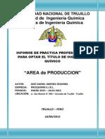 Informe Practicas Proquimin - Terminado