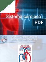 Sistema Cardiovascular 1