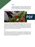 The GM Diet Vegetarian Plan.docx
