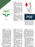 Leaflet Surveilance.docx