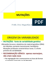 Mutação Mag2012.PDF