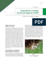 MANEJO DE HORMIGAScap 9 importancia de hormigas en MIP.pdf