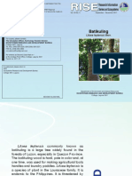 RISE Issue - Batikuling
