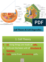 Elizondo Cell Theory and Cell Organelles-updated