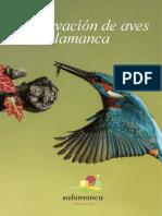 Observación de Aves en Salamanca