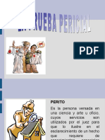 prueba_pericial